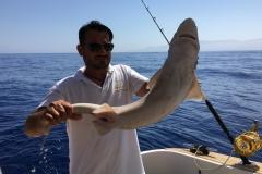 Fishing (12)
